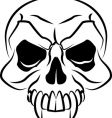 skull illustration vector image