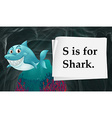 Letter S is for shark vector image vector image