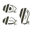 Human anatomy symbols vector image