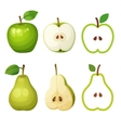 Green apple and pear whole half with seeds vector image