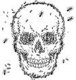 skull sketch design with ant isolate on white vector image vector image