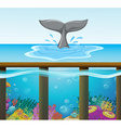Ocean scene with dolphin tail vector image