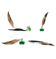 Feathers and inkwells set vector image