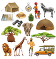 safari set icon set vector image