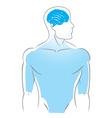 internal organs brain vector image vector image