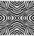 Trendy seamless zebra background vector image