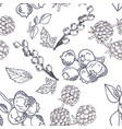 seamless pattern with fruits blueberry vector image