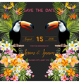 Wedding Card Tropical Flowers Toucan Bird vector image