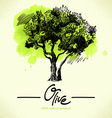 Hand drawn olive with watercolor back vector image vector image