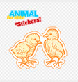 farm animals chicken in sketch style on colorful vector image