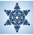 Beautiful Blue Snowflake vector image vector image