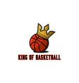 basketball ball logo basket teams tournament vector image