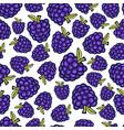 blackberry seamless pattern doodle berry design vector image