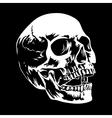 Skull 002 vector image