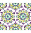 Thin Kaleidoscopic Flower Pattern vector image