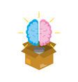 box with creative bulb brain inside vector image