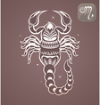 Scorpio zodiac sign vector image