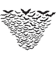 Cloud of bats vector image vector image