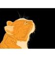 Cat smells spring flavors on black background vector image