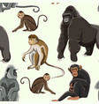 different types of monkeys pattern vector image