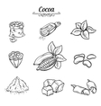 set decorative cocoa chocolate vector image vector image