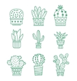 Set of cactus icons vector image vector image