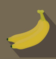 banana isolated banana icon vector image