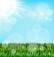 Green grass lawn with sunlight on blue sky Floral vector image
