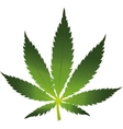 Cannabis leaf icon isolated vector image
