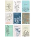 Vintage Floral Cards Set vector image