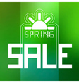 Spring Sale Theme with Sun Symbol on Green vector image vector image