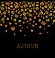 autumn background with leaf fall vector image