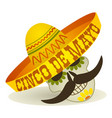 cinco de mayo holiday post card cartoon vector image