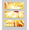 flower set banner brochure template vector image