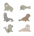 Set funny walruses and sea lions vector image