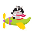 cute funny raccoon pilot character flying on vector image
