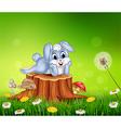 Cute little bunny on tree stump in summer season vector image