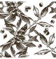 seamless pattern with coffee tree branches vector image