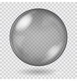 Big black transparent glass sphere vector image