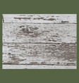 wood grunge texture in black and white wooden vector image