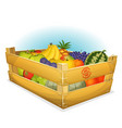 basket of healthy organic fruits vector image