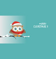 male owl with santa claus hat on a branch in a vector image