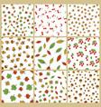autumn plants element seamless patterns set vector image