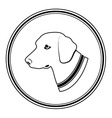sign of white dogs head in black round Silhouette vector image