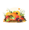 autumn harvest of vegetables and fruits vector image