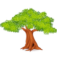 Cartoon of tree vector image
