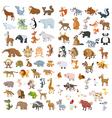 Big animals set4 vector image vector image