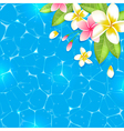 Tropical flowers on a blue background vector image