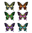 Set of multicolored butterflies on a white vector image