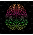 Abstract geometric brain network connections vector image